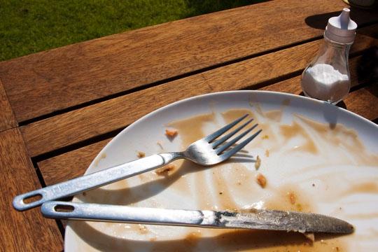 2009-08-17-MealFinish